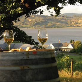 Ninth Island vineyard offers tastings and sales of Pipers Brook, Ninth Island and Kreglinger wines. Strathlynn Restaurant offers one of the finest dining experiences on the island; the excellent cuisine is matched by a sensational view of the Tamar River below.