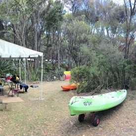 Camping Crayfish Creek