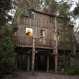 ttreehouse_exterior3